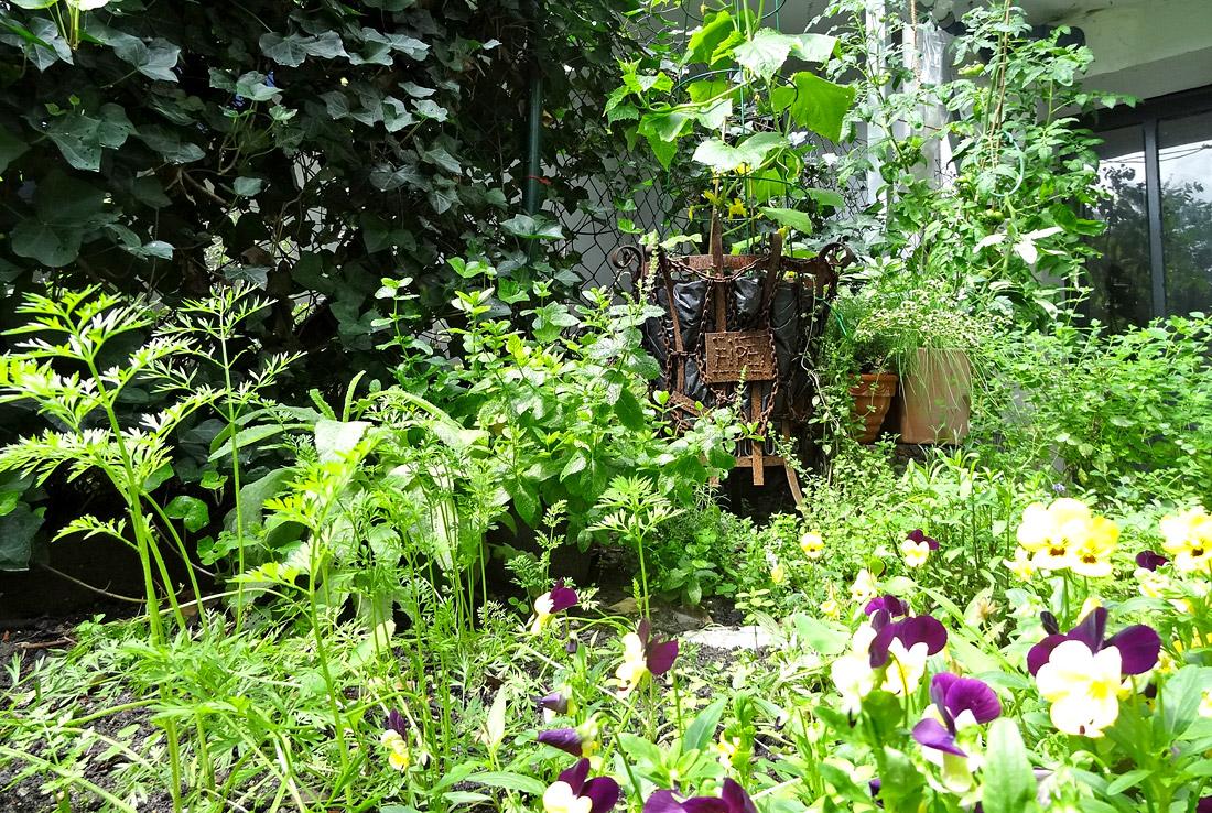 Ein großes Kräuter-Gemüse-Blumen-Durcheinander