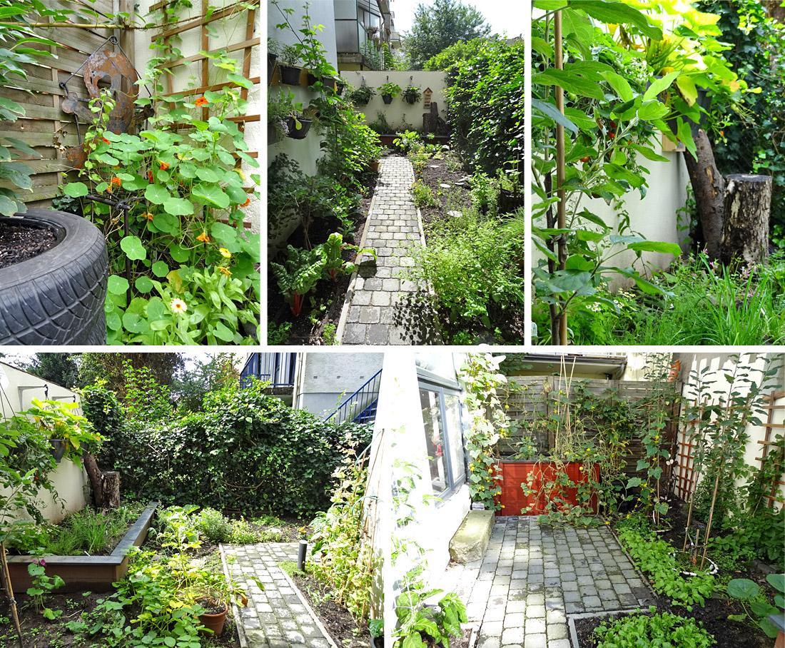 Der Mini-Garten im Überblick