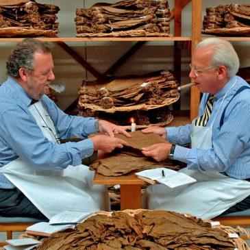 Tabak – Tradition und Handel