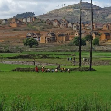 """Madagaskar Teil 2 – Leben und Reisen """"im Land"""""""