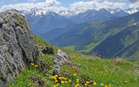 Traumhafte Bergwelt des Zillertal