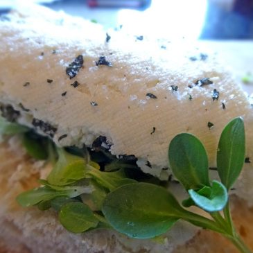 Käse-Dreierlei