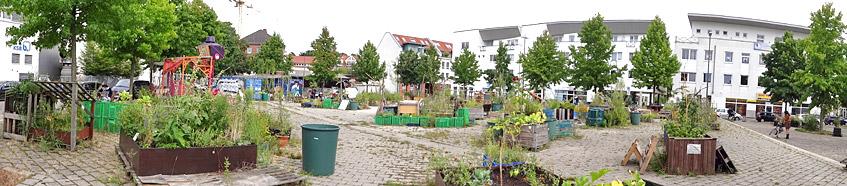 Lucie - Urban Gardening am Lucie-Flechtmann-Platz