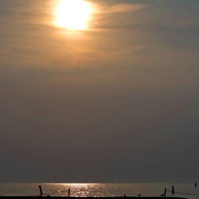 Der Strand, Paradies für Menschen und Möwen