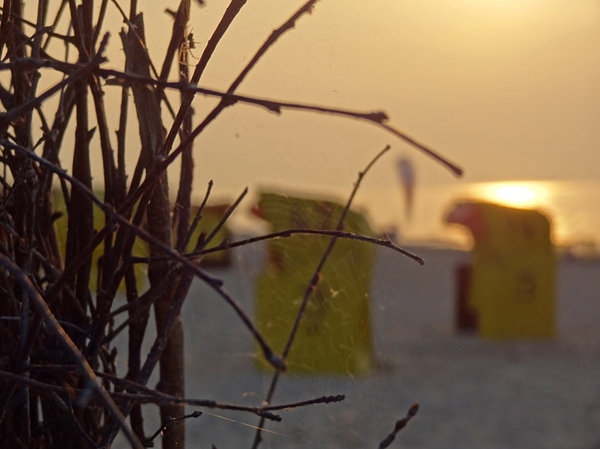 Strandkörbe im Abendlicht