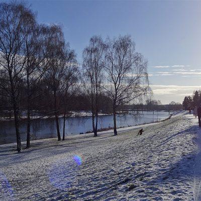 Deich-Rodler und Spaziergänger