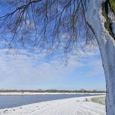 Ein weiß-blauer Winter-Traum