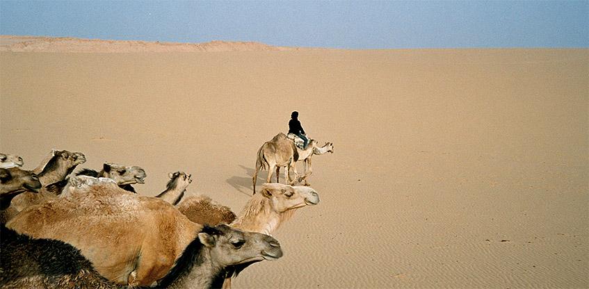 Altes Ägypten-Abenteuer
