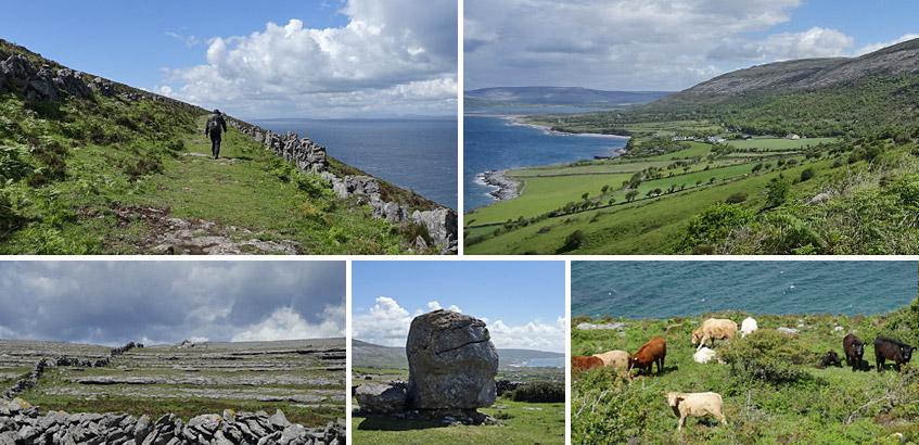 Weg für Kühe und Wanderer