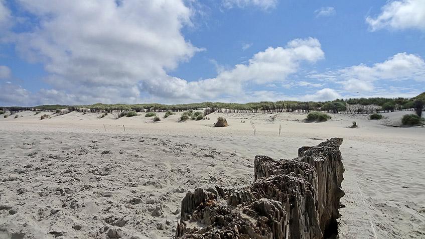 Strand, Dünen, blauer Himmel