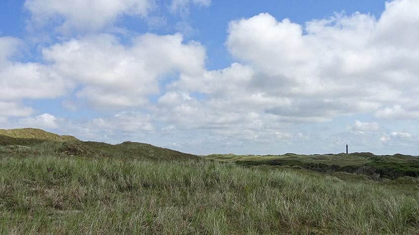 Naturschutzgebiet hinter den Dünen