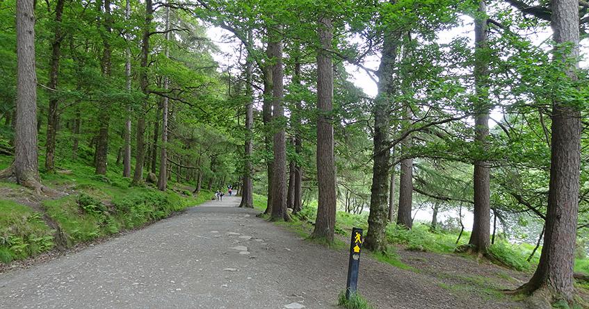 Der kleine See in Glendalough