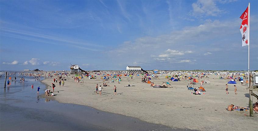Strand mit Leben