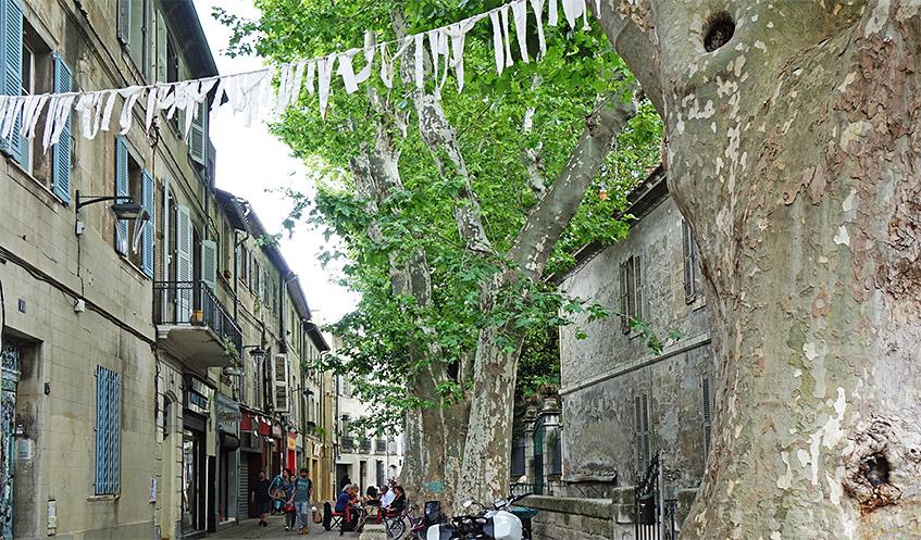 Im Färber-Viertel von Avignon