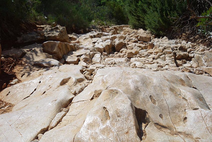 Rutschige Steine auf dem Wanderweg