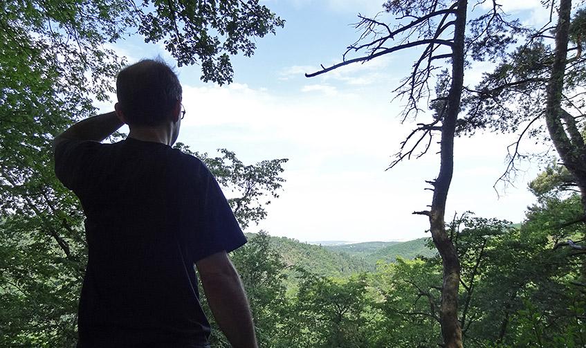 Blick auf die hügelige Landschaft