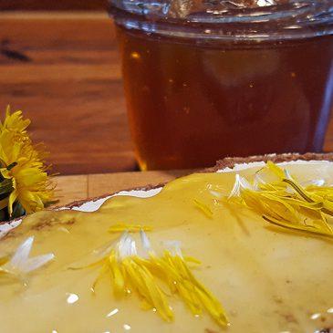 Löwenzahn-Honig – günstig und gut