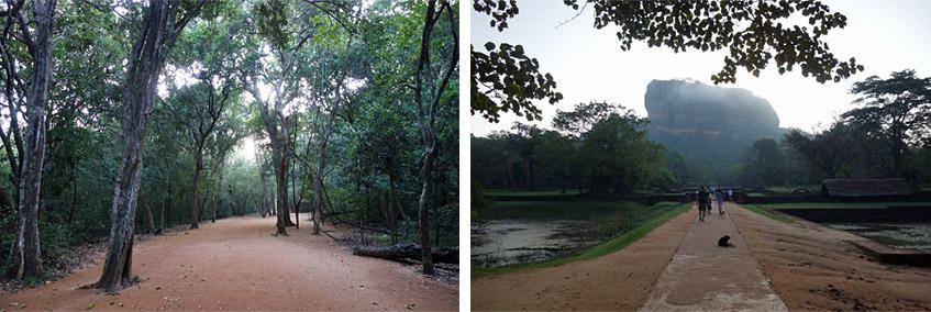 Morgens um sieben in Sigirya