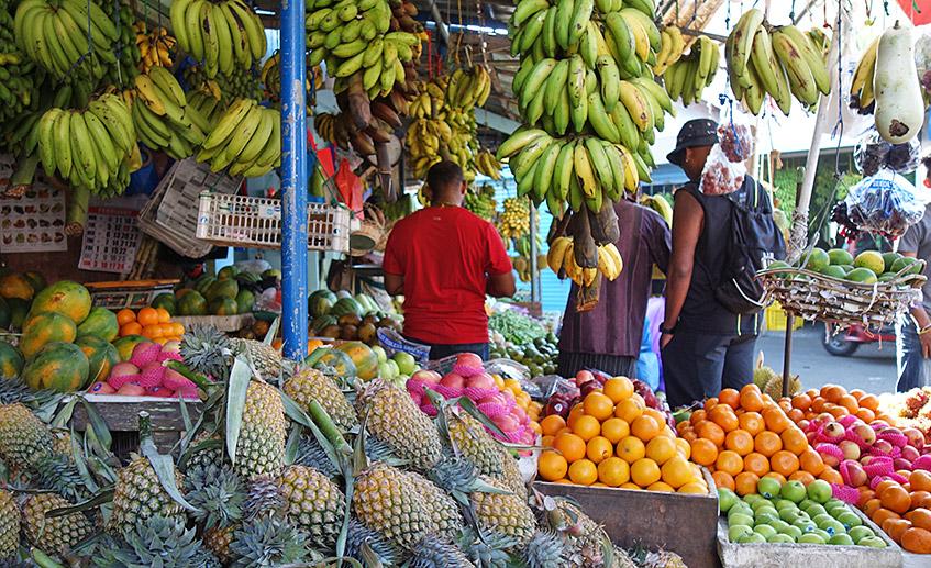 Obst und Gemüse ohne Ende
