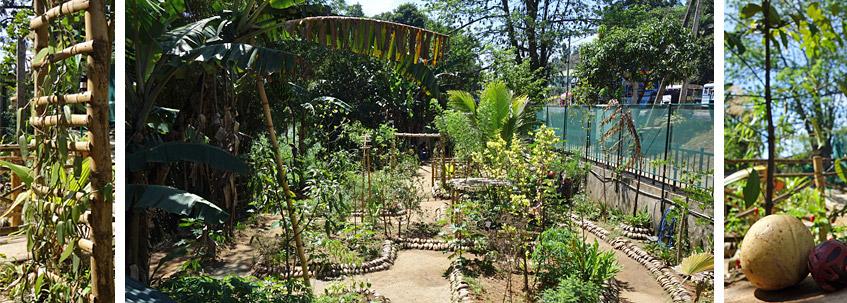 Gewürz- und Heilkräuter-Garten bei Kandy