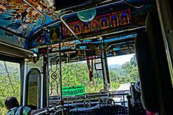 Bunt, bunter, Bus!