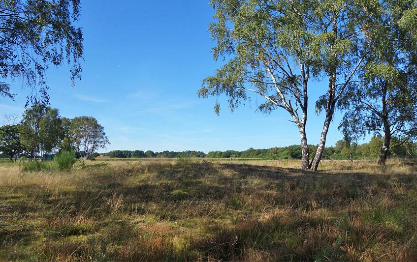 Eines mehrerer Hügelgräber