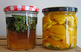 Spitzwegerich-Thymian-Honig und Zitrus-Reiniger