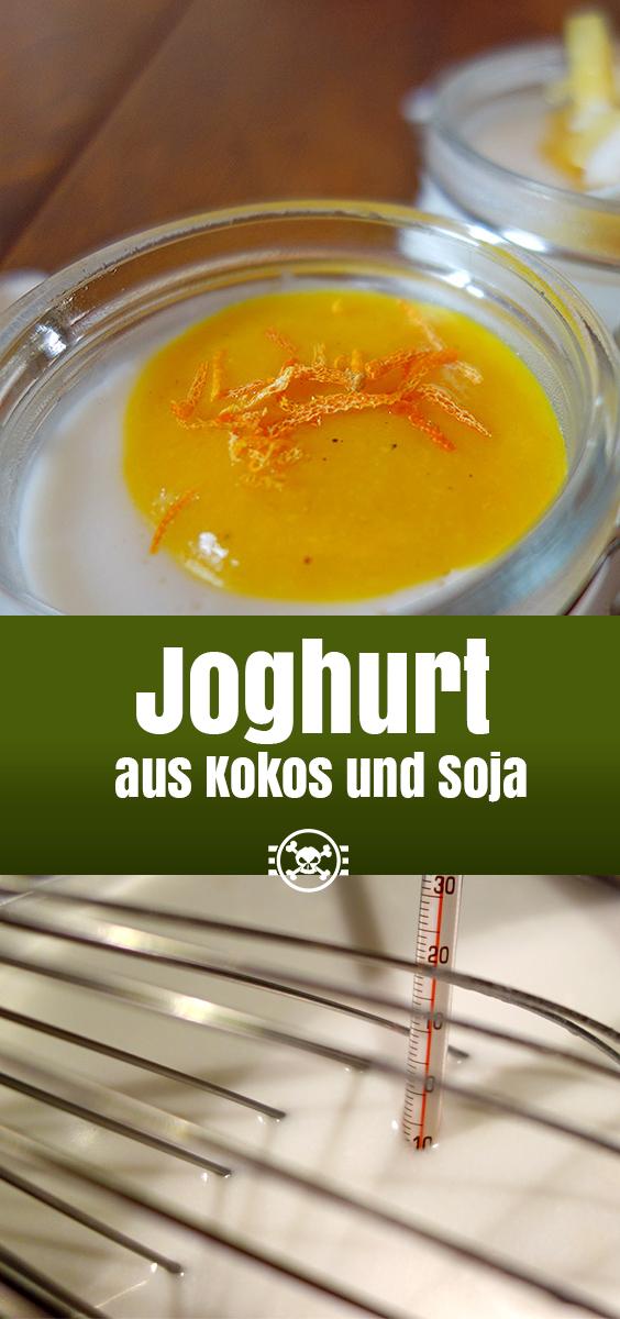 Joghurt aus Kokos und Soja